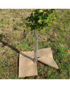 Biodegradable Jute & Hessian Weed Mats