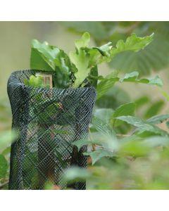 Climatic Mesh Tree Guard